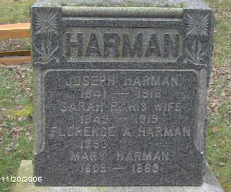 HARMAN, SARAH - Lycoming County, Pennsylvania | SARAH HARMAN - Pennsylvania Gravestone Photos