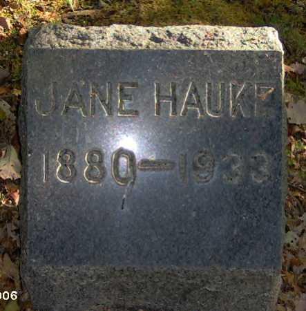 HAUKE, JANE - Lycoming County, Pennsylvania | JANE HAUKE - Pennsylvania Gravestone Photos