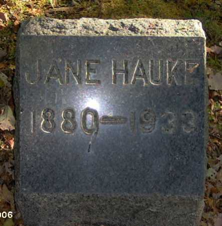 HAUKE, JANE - Lycoming County, Pennsylvania | JANE HAUKE - Pennsylvania Gravestone Photos