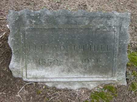 HILL, ELIZABETH - Lycoming County, Pennsylvania   ELIZABETH HILL - Pennsylvania Gravestone Photos
