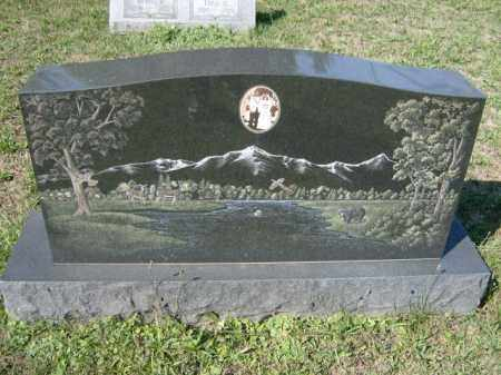 JOHNSON, RONALD - Lycoming County, Pennsylvania | RONALD JOHNSON - Pennsylvania Gravestone Photos
