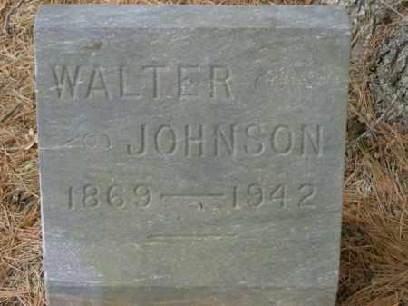 JOHNSON, WALTER - Lycoming County, Pennsylvania | WALTER JOHNSON - Pennsylvania Gravestone Photos