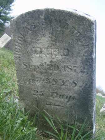 MARQUARD, NICHOLAS - Lycoming County, Pennsylvania | NICHOLAS MARQUARD - Pennsylvania Gravestone Photos