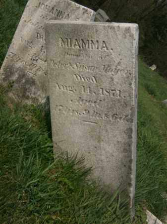 MOYER, JOHANNA - Lycoming County, Pennsylvania | JOHANNA MOYER - Pennsylvania Gravestone Photos