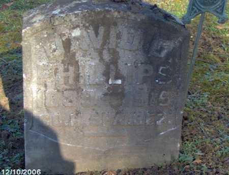 PHILLIPS, DAVID - Lycoming County, Pennsylvania   DAVID PHILLIPS - Pennsylvania Gravestone Photos