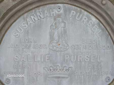 PURSEL, SUSANNAH - Lycoming County, Pennsylvania | SUSANNAH PURSEL - Pennsylvania Gravestone Photos