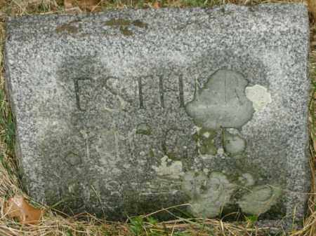 RIGGLE, ESTHER - Lycoming County, Pennsylvania | ESTHER RIGGLE - Pennsylvania Gravestone Photos