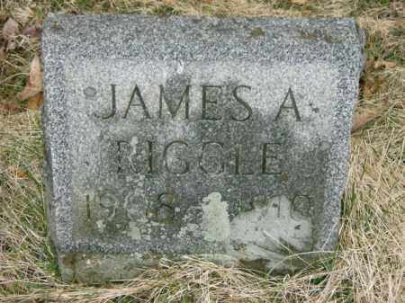 RIGGLE, JAMES - Lycoming County, Pennsylvania | JAMES RIGGLE - Pennsylvania Gravestone Photos