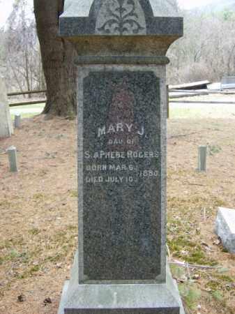ROGERS, MARY - Lycoming County, Pennsylvania | MARY ROGERS - Pennsylvania Gravestone Photos