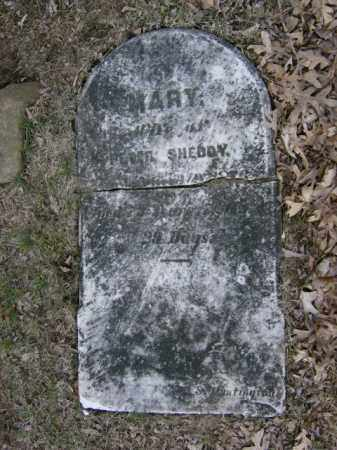 SHEDDY, MARY - Lycoming County, Pennsylvania | MARY SHEDDY - Pennsylvania Gravestone Photos