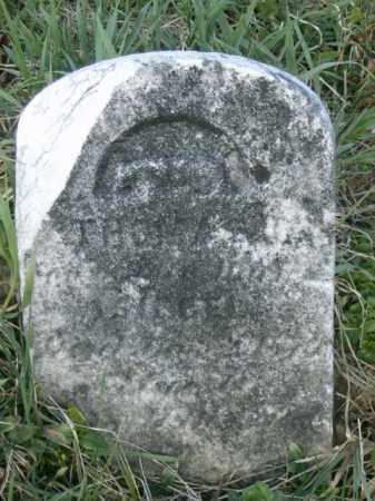 SIEGEL, THOMAS - Lycoming County, Pennsylvania | THOMAS SIEGEL - Pennsylvania Gravestone Photos