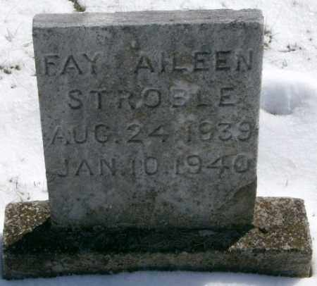 STROBLE, FAY - Lycoming County, Pennsylvania | FAY STROBLE - Pennsylvania Gravestone Photos