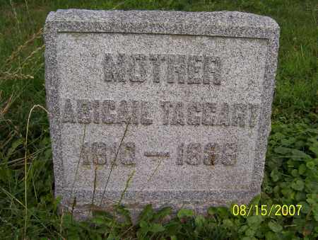 TAGGART, ABIGAIL - Lycoming County, Pennsylvania | ABIGAIL TAGGART - Pennsylvania Gravestone Photos