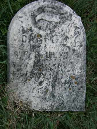 ULMER, CARRIE - Lycoming County, Pennsylvania | CARRIE ULMER - Pennsylvania Gravestone Photos