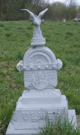 ULMER, SALOME - Lycoming County, Pennsylvania | SALOME ULMER - Pennsylvania Gravestone Photos