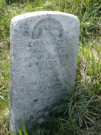 WALTZ, EMANUEL - Lycoming County, Pennsylvania | EMANUEL WALTZ - Pennsylvania Gravestone Photos