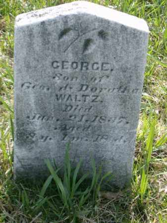 WALTZ, GEORGE - Lycoming County, Pennsylvania | GEORGE WALTZ - Pennsylvania Gravestone Photos