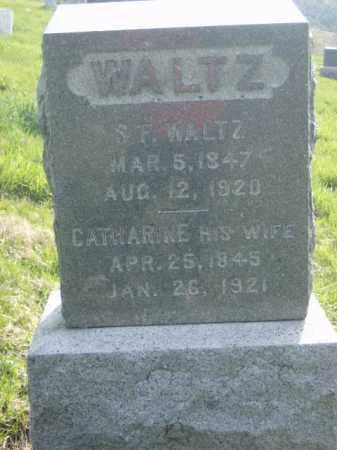 WALTZ, SAMUEL - Lycoming County, Pennsylvania | SAMUEL WALTZ - Pennsylvania Gravestone Photos