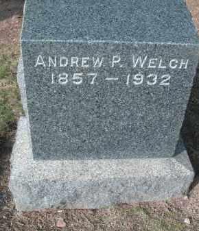 WELCH, ANDREW P - Lycoming County, Pennsylvania | ANDREW P WELCH - Pennsylvania Gravestone Photos
