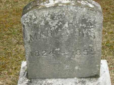 WOOD, MARY - Lycoming County, Pennsylvania | MARY WOOD - Pennsylvania Gravestone Photos