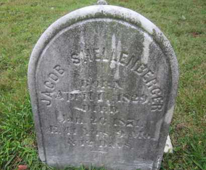 SHELLENBERGER, JACOB - Monroe County, Pennsylvania | JACOB SHELLENBERGER - Pennsylvania Gravestone Photos