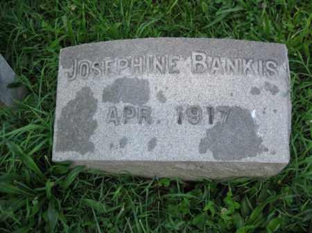 BANKIS, JOSEPHINE - Montgomery County, Pennsylvania | JOSEPHINE BANKIS - Pennsylvania Gravestone Photos
