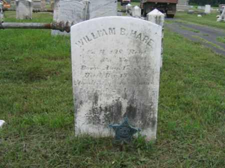 HARE   (CW), PVT. WILLIAM B. - Montgomery County, Pennsylvania | PVT. WILLIAM B. HARE   (CW) - Pennsylvania Gravestone Photos
