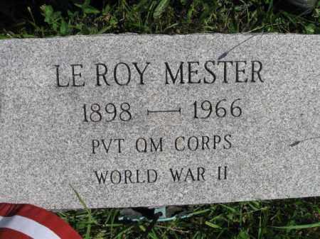 MESTER (WW II), LEROY - Montgomery County, Pennsylvania | LEROY MESTER (WW II) - Pennsylvania Gravestone Photos