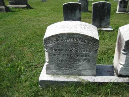 WEDDELL, REV. A.J. - Montgomery County, Pennsylvania | REV. A.J. WEDDELL - Pennsylvania Gravestone Photos
