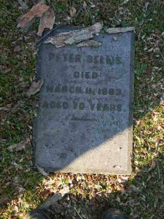 BELLIS, PETER - Northampton County, Pennsylvania | PETER BELLIS - Pennsylvania Gravestone Photos
