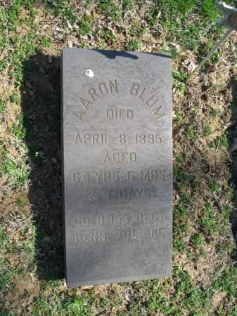 BLUM, AARON - Northampton County, Pennsylvania | AARON BLUM - Pennsylvania Gravestone Photos