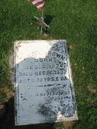BROWN, DANIEL - Northampton County, Pennsylvania   DANIEL BROWN - Pennsylvania Gravestone Photos