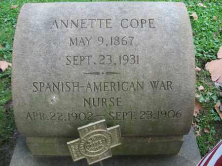 COPE, ANNETTE - Northampton County, Pennsylvania | ANNETTE COPE - Pennsylvania Gravestone Photos