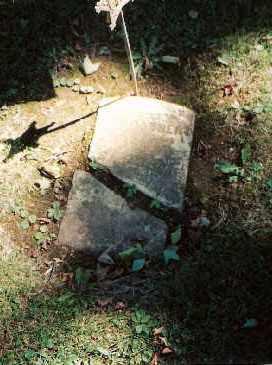 DAUBERT (CW), JOHN - Northampton County, Pennsylvania | JOHN DAUBERT (CW) - Pennsylvania Gravestone Photos