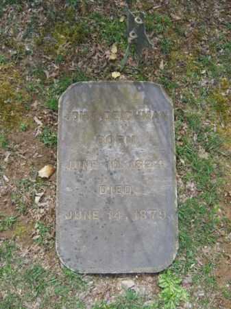 DEICHMAN (CW), JOHN - Northampton County, Pennsylvania | JOHN DEICHMAN (CW) - Pennsylvania Gravestone Photos