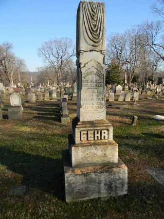 FEHR, SAMUEL - Northampton County, Pennsylvania | SAMUEL FEHR - Pennsylvania Gravestone Photos