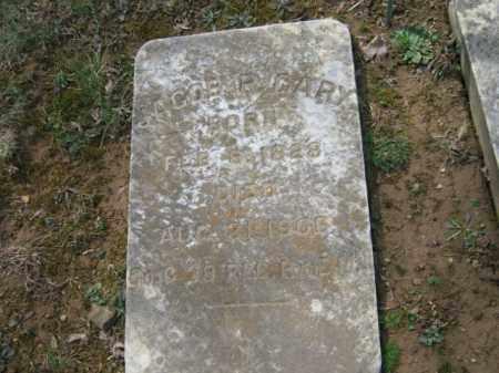 GARY, JACOB P. - Northampton County, Pennsylvania   JACOB P. GARY - Pennsylvania Gravestone Photos