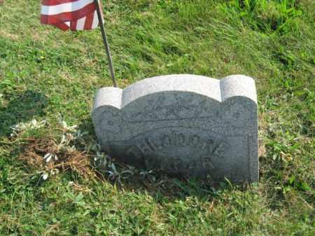 LABAR (CW), THEODORE - Northampton County, Pennsylvania | THEODORE LABAR (CW) - Pennsylvania Gravestone Photos
