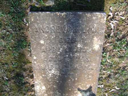 LINN, ANDREW - Northampton County, Pennsylvania | ANDREW LINN - Pennsylvania Gravestone Photos