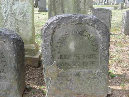 MCCAULEY, JAMES - Northampton County, Pennsylvania | JAMES MCCAULEY - Pennsylvania Gravestone Photos