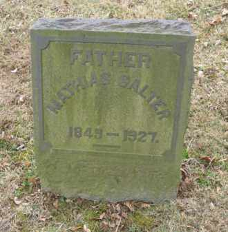 SALTER, MATHIAS - Northampton County, Pennsylvania | MATHIAS SALTER - Pennsylvania Gravestone Photos