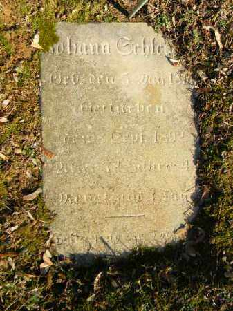 SCHLEGEL, JOHANN - Northampton County, Pennsylvania | JOHANN SCHLEGEL - Pennsylvania Gravestone Photos