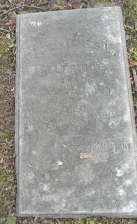 SELFRIDGE (CW), GEN. JAMES L. - Northampton County, Pennsylvania | GEN. JAMES L. SELFRIDGE (CW) - Pennsylvania Gravestone Photos