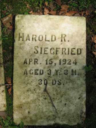 SIEFRIED, HAROLD R. - Northampton County, Pennsylvania | HAROLD R. SIEFRIED - Pennsylvania Gravestone Photos
