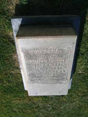 SPRIGLE, PHILPENA - Northampton County, Pennsylvania | PHILPENA SPRIGLE - Pennsylvania Gravestone Photos