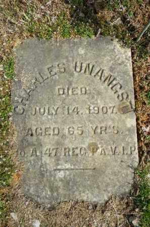 UNANGST (CW), CHARLES - Northampton County, Pennsylvania   CHARLES UNANGST (CW) - Pennsylvania Gravestone Photos