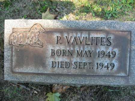 VAVLITES, P. - Northampton County, Pennsylvania | P. VAVLITES - Pennsylvania Gravestone Photos