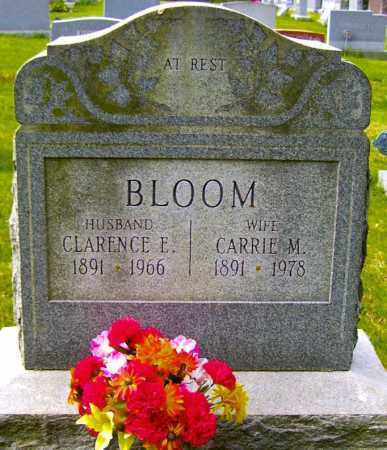 BLOOM, CLARENCE E - Northumberland County, Pennsylvania | CLARENCE E BLOOM - Pennsylvania Gravestone Photos