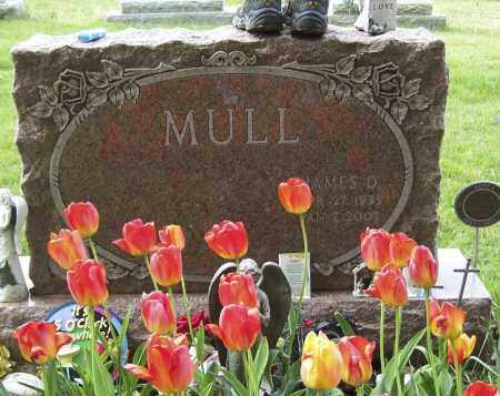 MULL, JAMES D - Northumberland County, Pennsylvania | JAMES D MULL - Pennsylvania Gravestone Photos