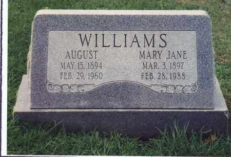 WILLIAMS, MARY JANE - Northumberland County, Pennsylvania   MARY JANE WILLIAMS - Pennsylvania Gravestone Photos